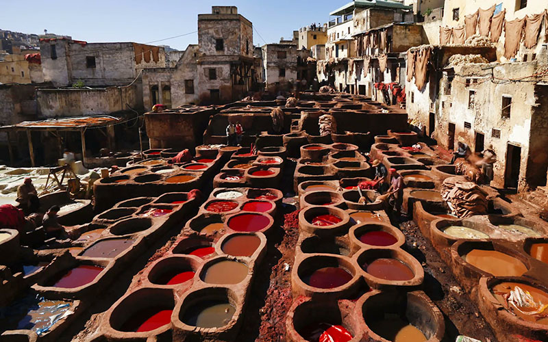 Excursion Fez Sightseeing Tour